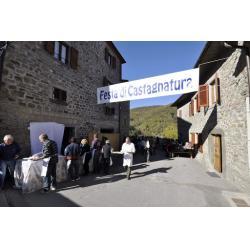 Festa di Castagnatura e raccolta delle castagne